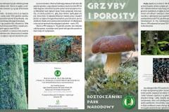 Folder_RPN_Grzyby_i_Porosty
