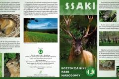 Folder_RPN_Ssaki