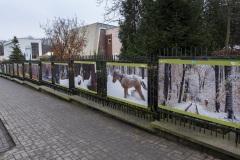 Wystawa_RPN-okiem-fotografow-13