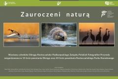 Wystawa_RPN_ORP-ZPFP_Zauroczeni-natura-1