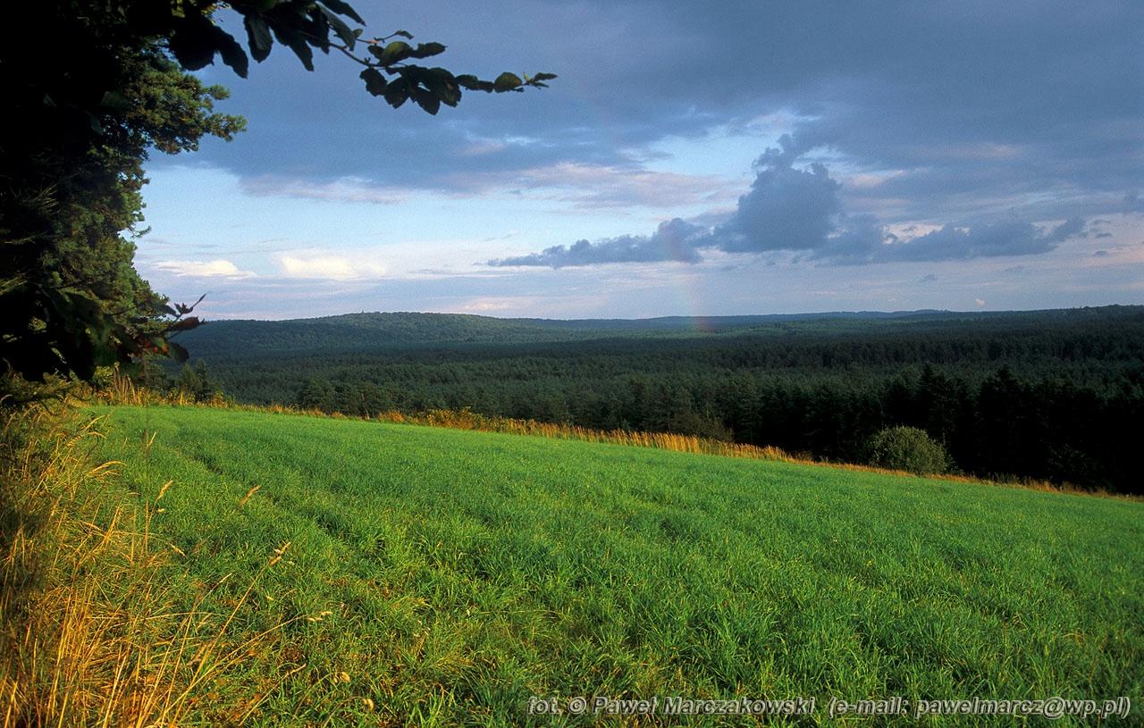 Foto i Natura